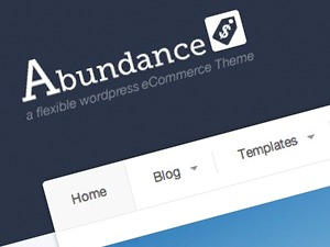 Abundance WordPress template for business