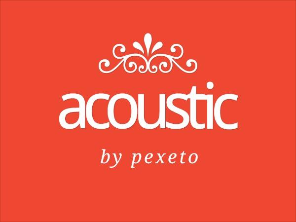 Acoustic WordPress website template