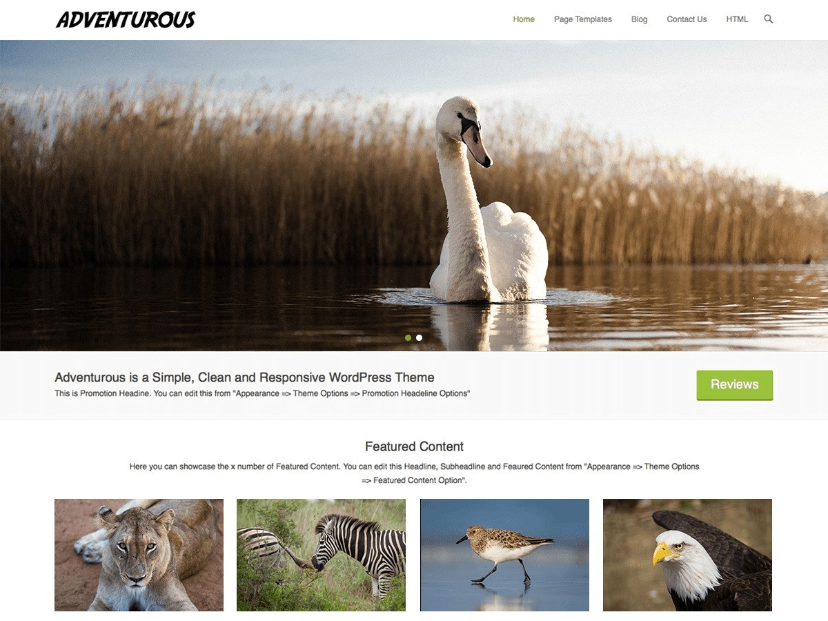 Adventurous WordPress theme image