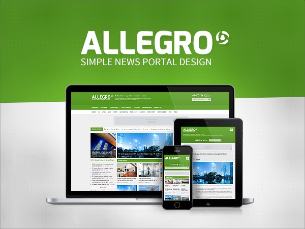 Allegro Premium Theme WordPress website template