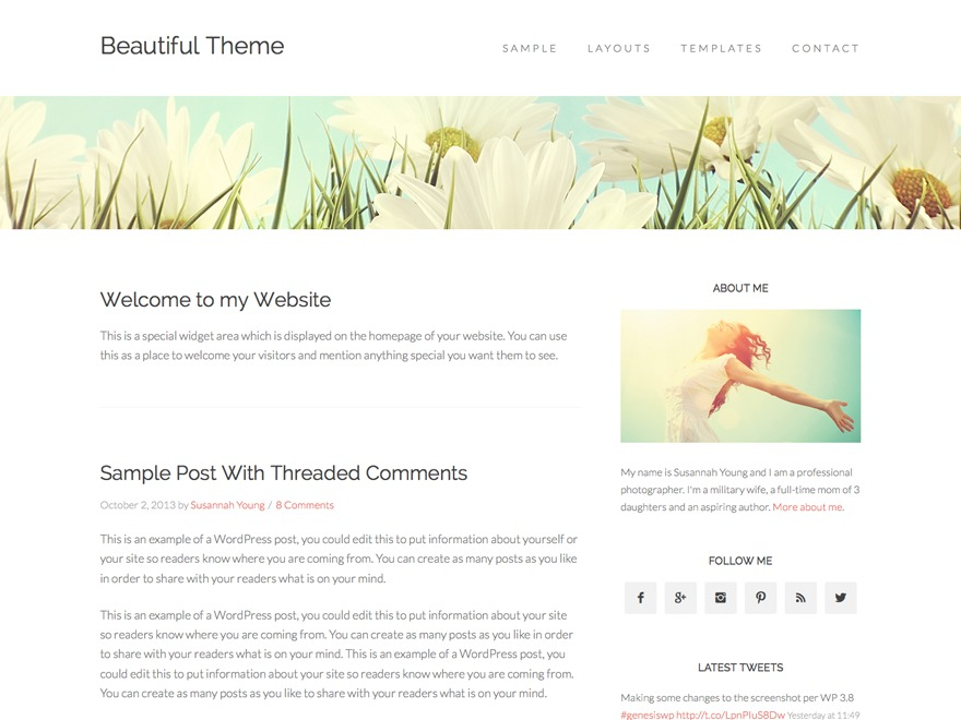 Beautiful Pro Theme WordPress website template