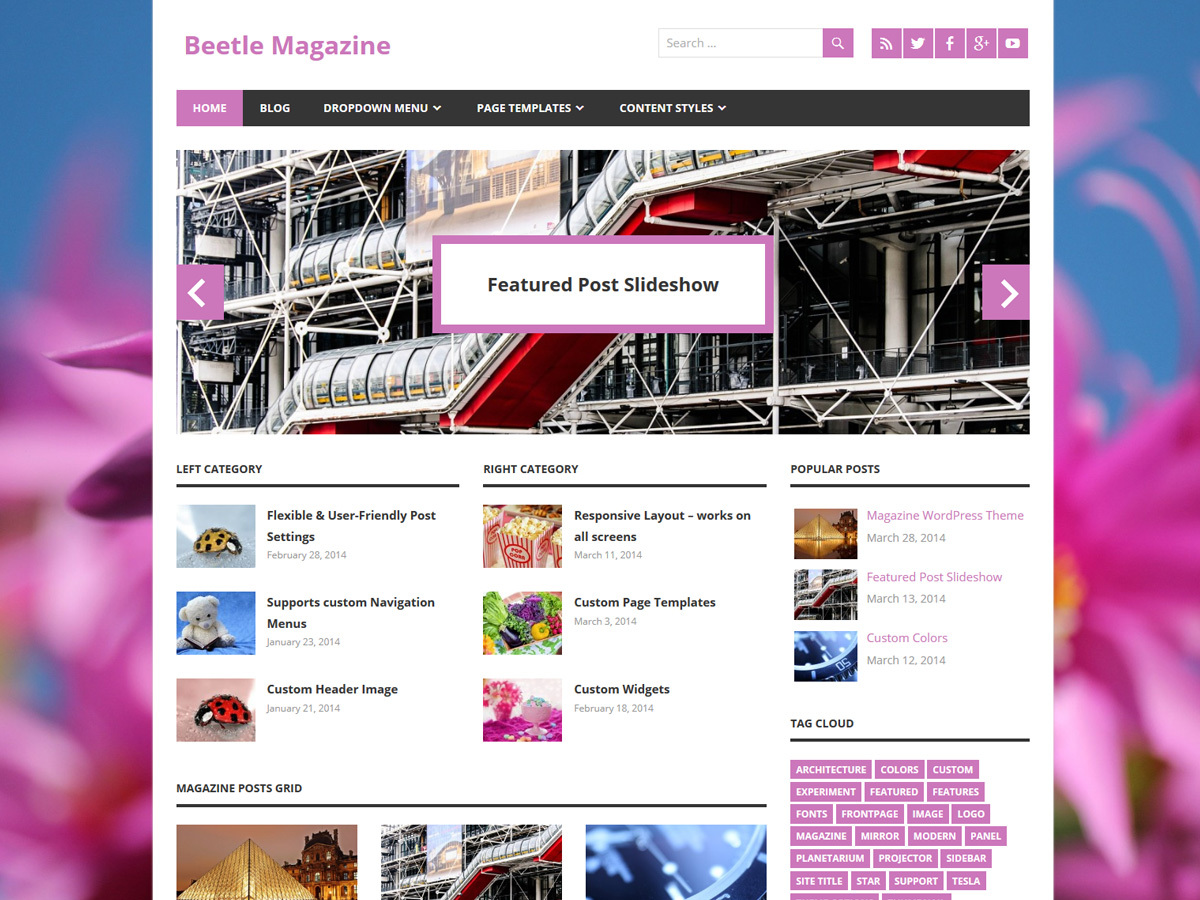 Beetle free WordPress theme