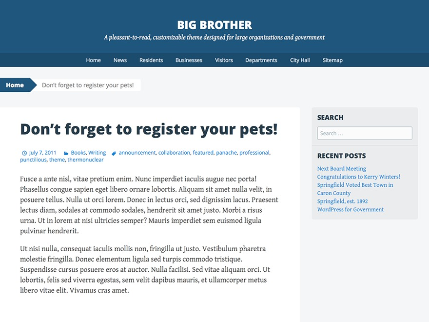 Big Brother theme WordPress
