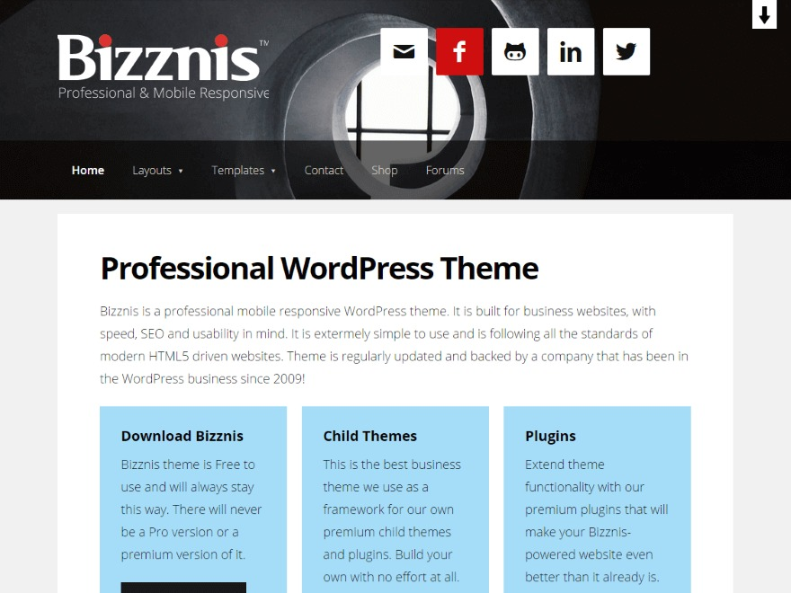 Bizznis WordPress theme download