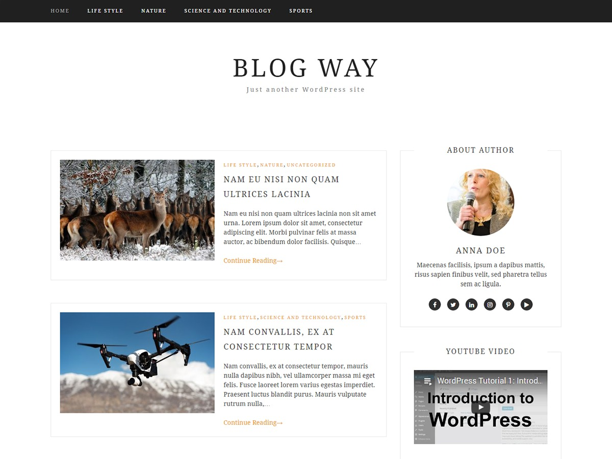 Blog Way free WordPress theme