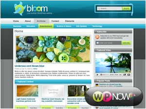 Bloom top WordPress theme
