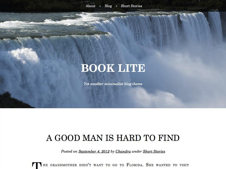 Book Lite WordPress blog template