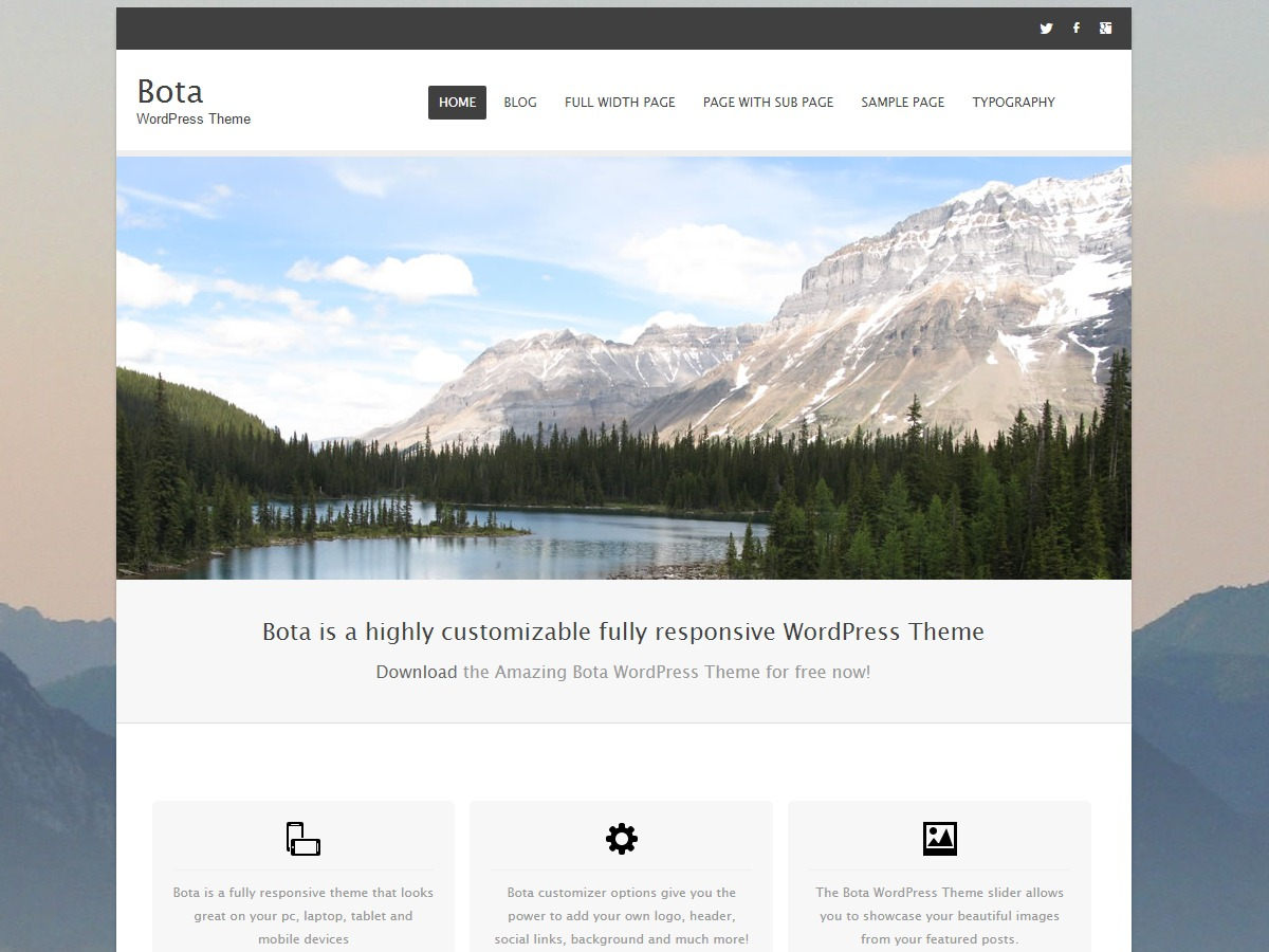 Bota theme WordPress free