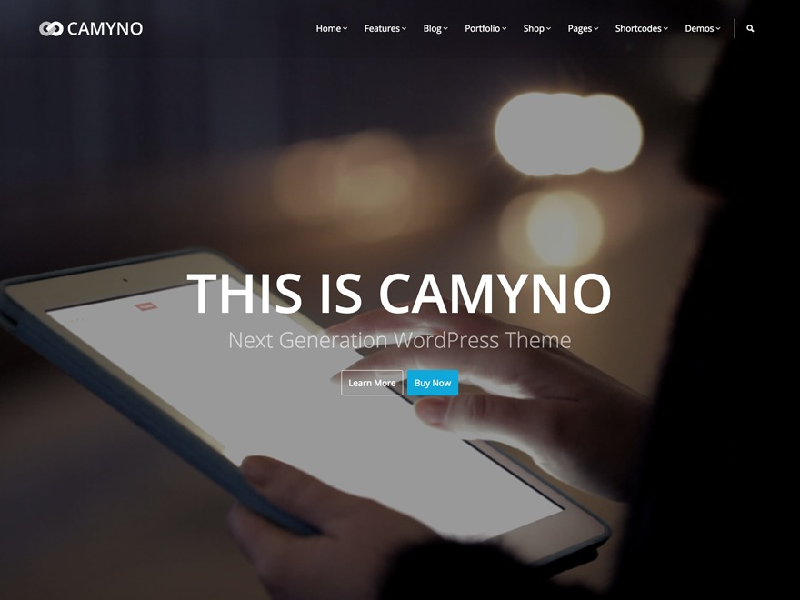 Camyno WordPress template