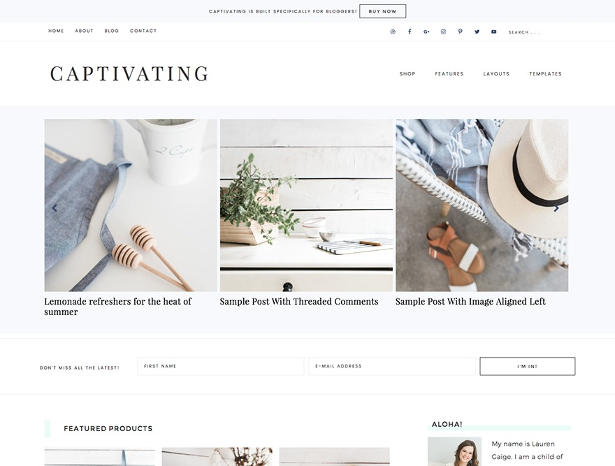 Captivating Theme WordPress ecommerce theme