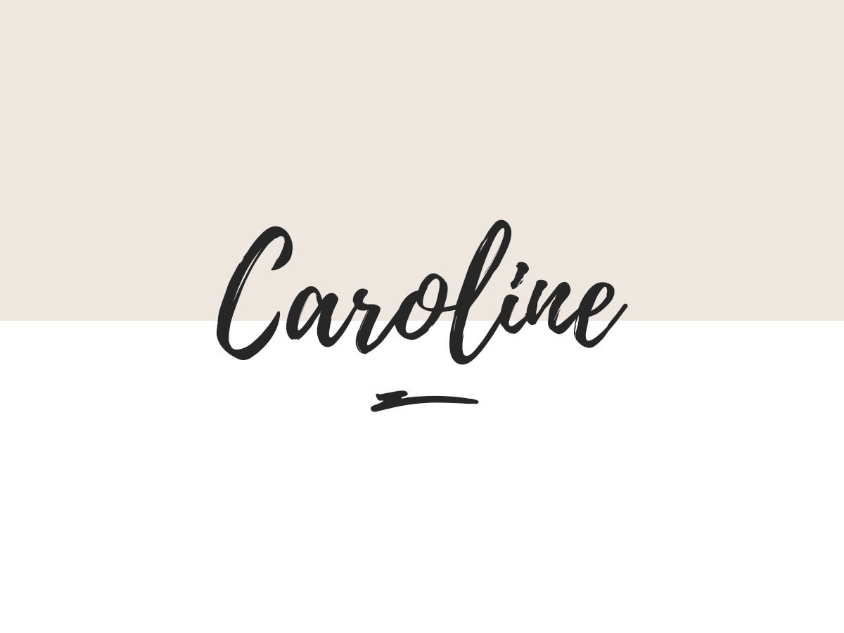 Caroline WordPress shopping theme