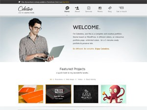 Celestino best portfolio WordPress theme