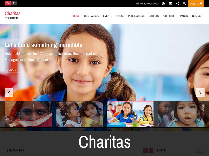 Charitas WordPress theme