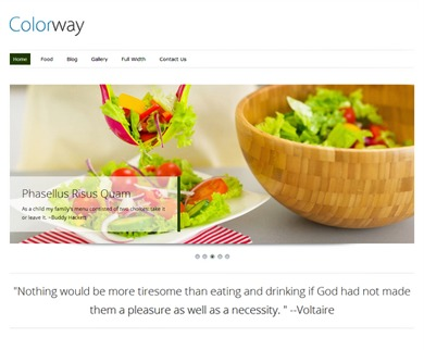 ColorWay Pro Responsive Theme best WordPress gallery