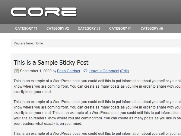 Core personal WordPress theme