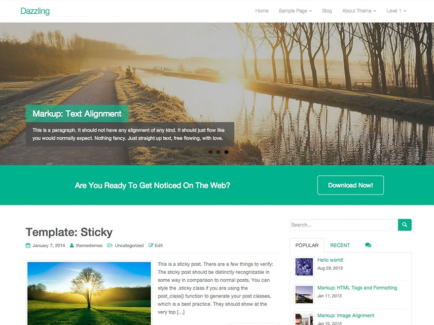 Dazzling WordPress travel theme
