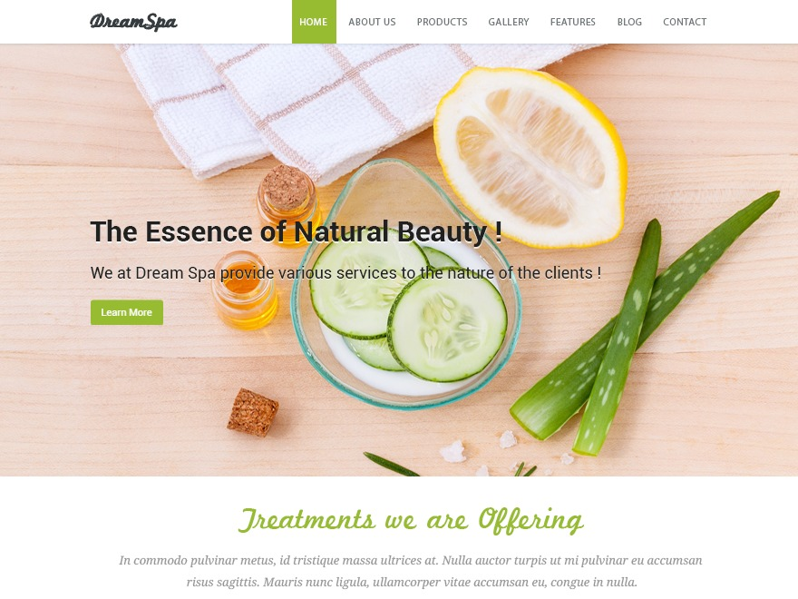 Dream Spa theme free download