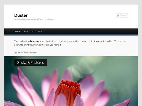 Duster WordPress blog template