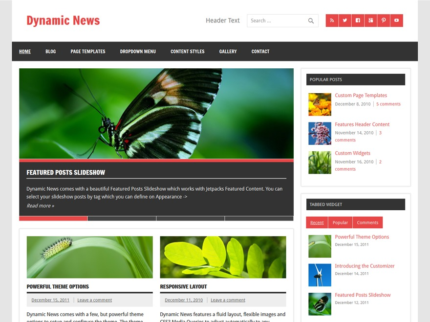 Dynamic News Lite free website theme