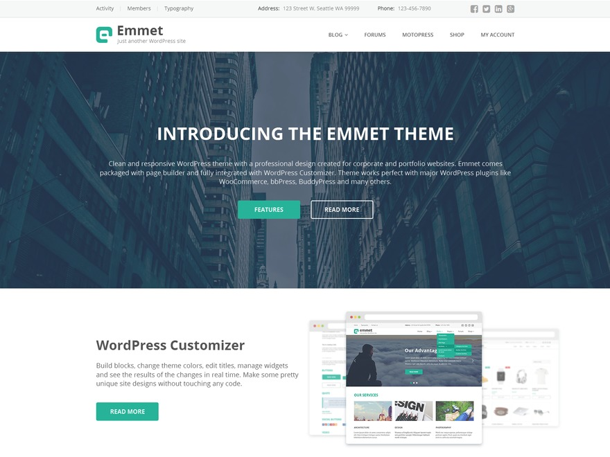 Emmet Lite free WordPress theme