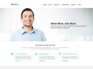 Emulate business WordPress theme
