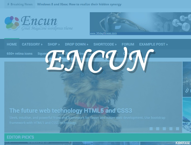 encun best WordPress magazine theme