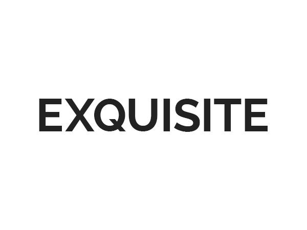 () Exquisite WordPress news template