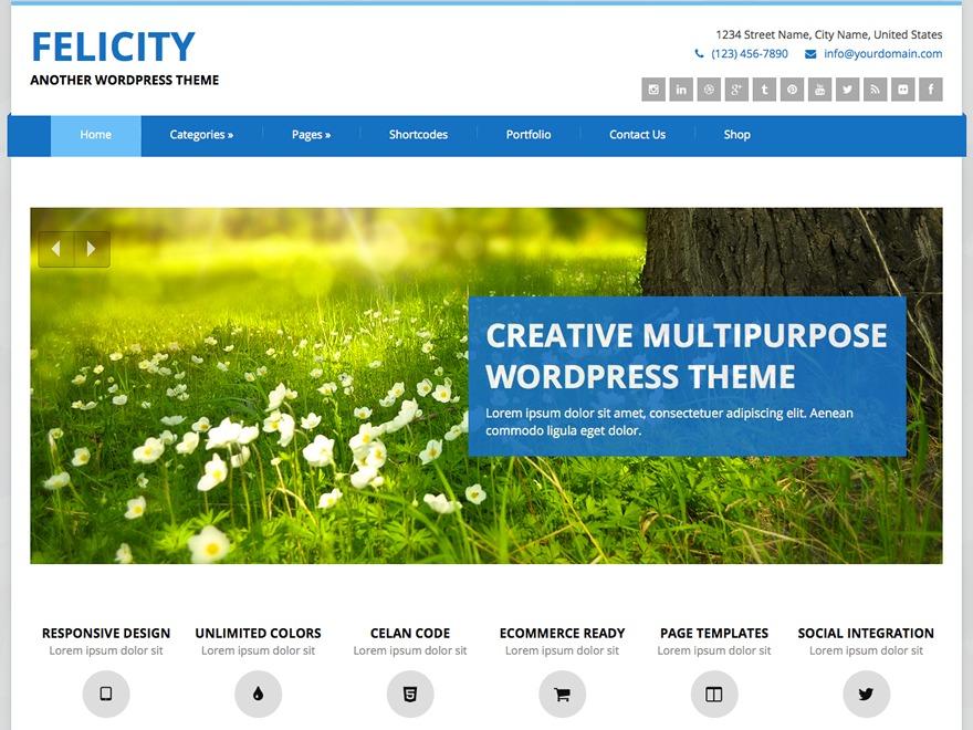 Felicity WordPress website template