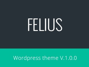 Felius best WordPress theme