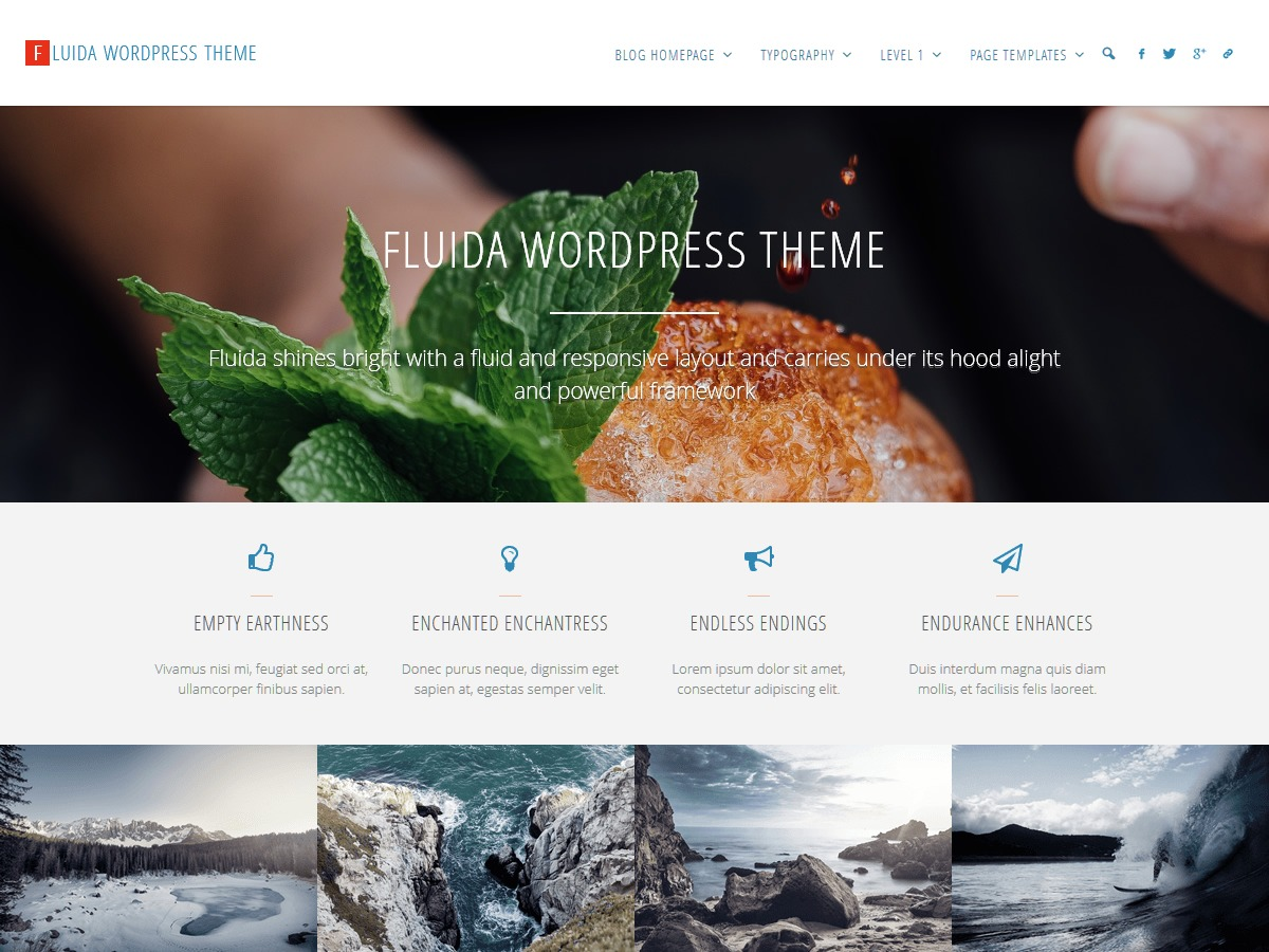 Fluida template WordPress free