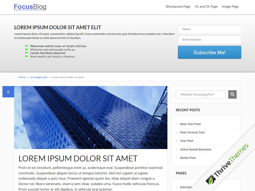FocusBlog WordPress blog template