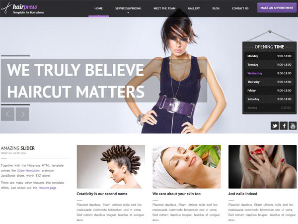 Hairpress WP Theme business WordPress theme