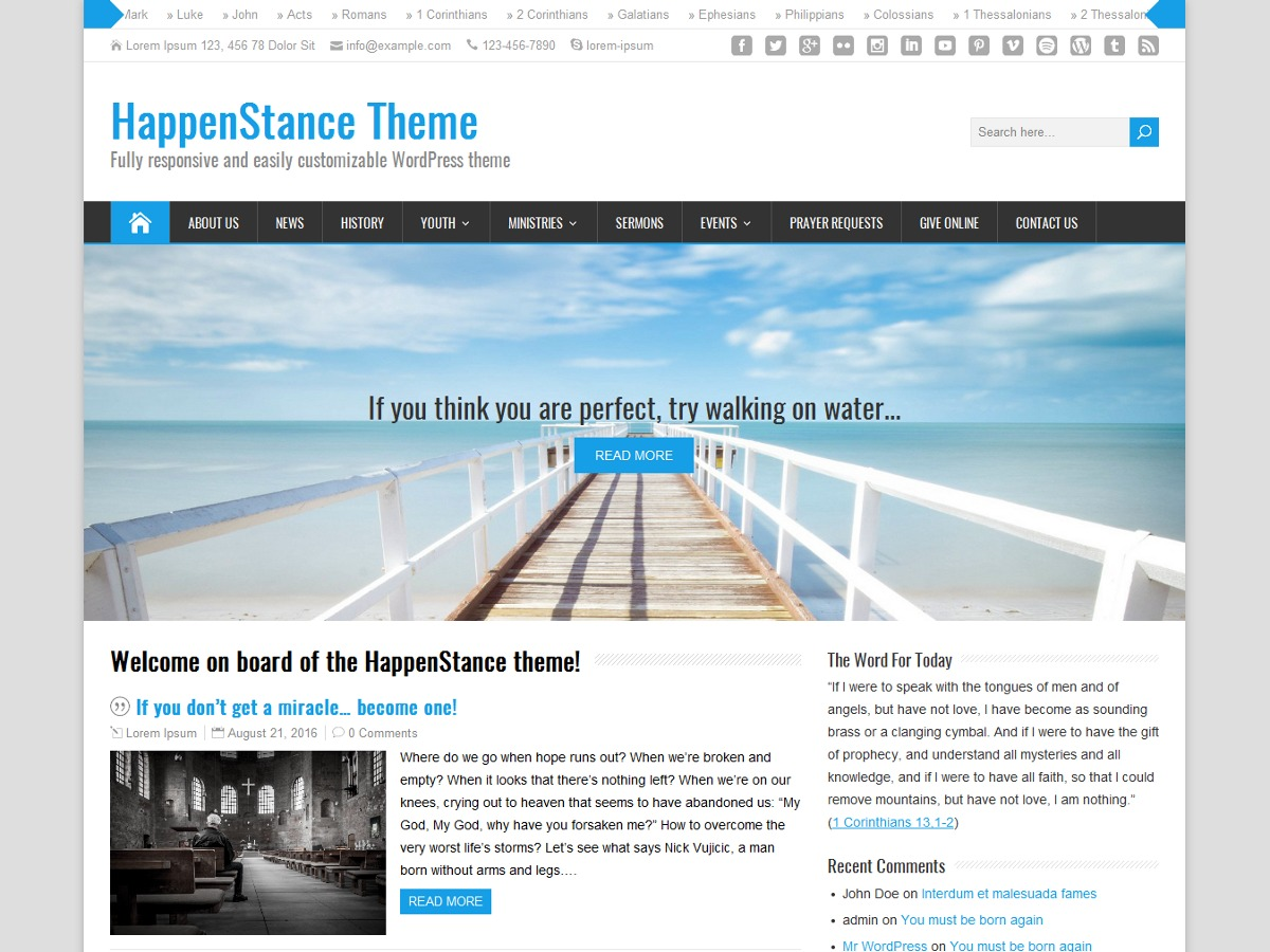 HappenStance WordPress ecommerce theme