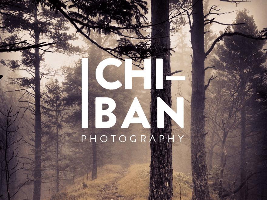 Ichiban best WordPress gallery