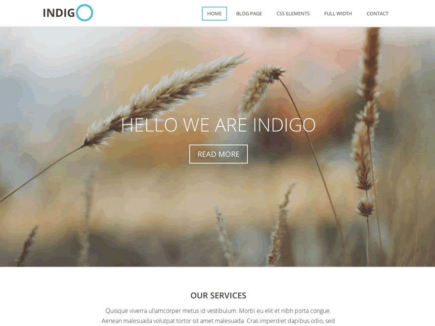Indigo WordPress website template