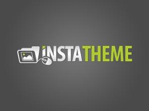InstaTheme theme WordPress