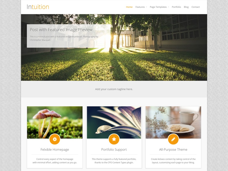 Intuition free WordPress theme