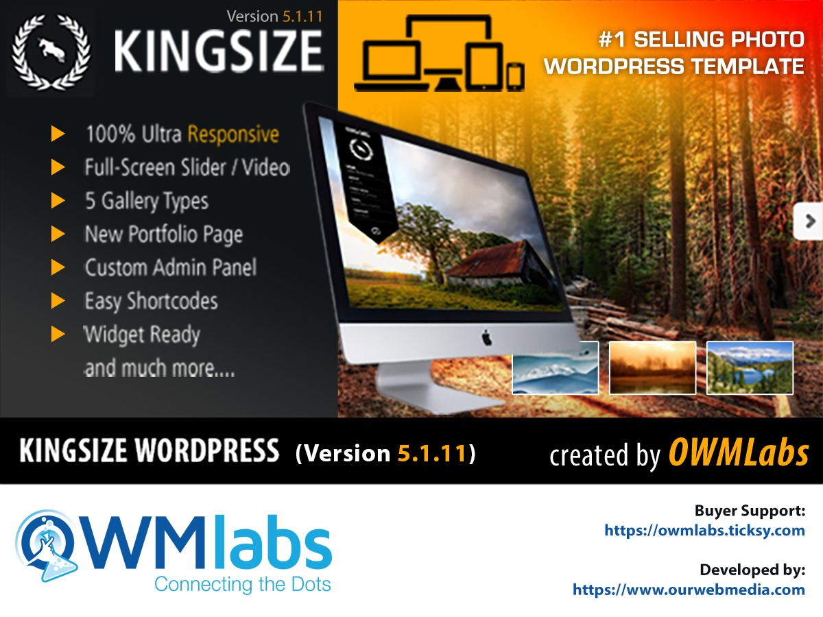KingSize best portfolio WordPress theme