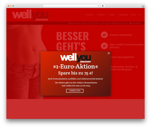 Kleo theme WordPress - wellyou.eu