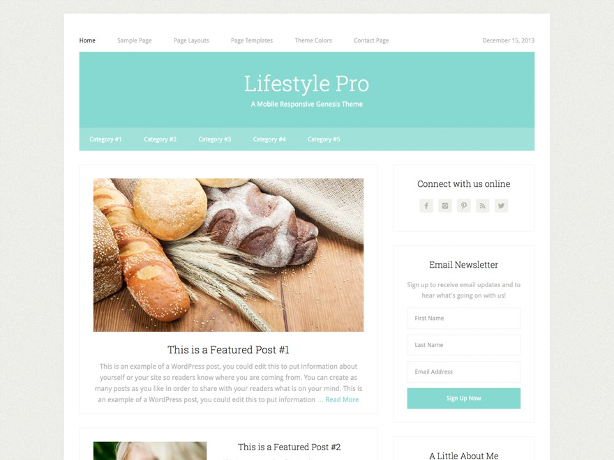 Lifestyle Pro Theme WordPress theme
