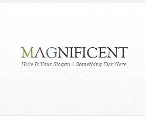 Magnificent best WordPress theme
