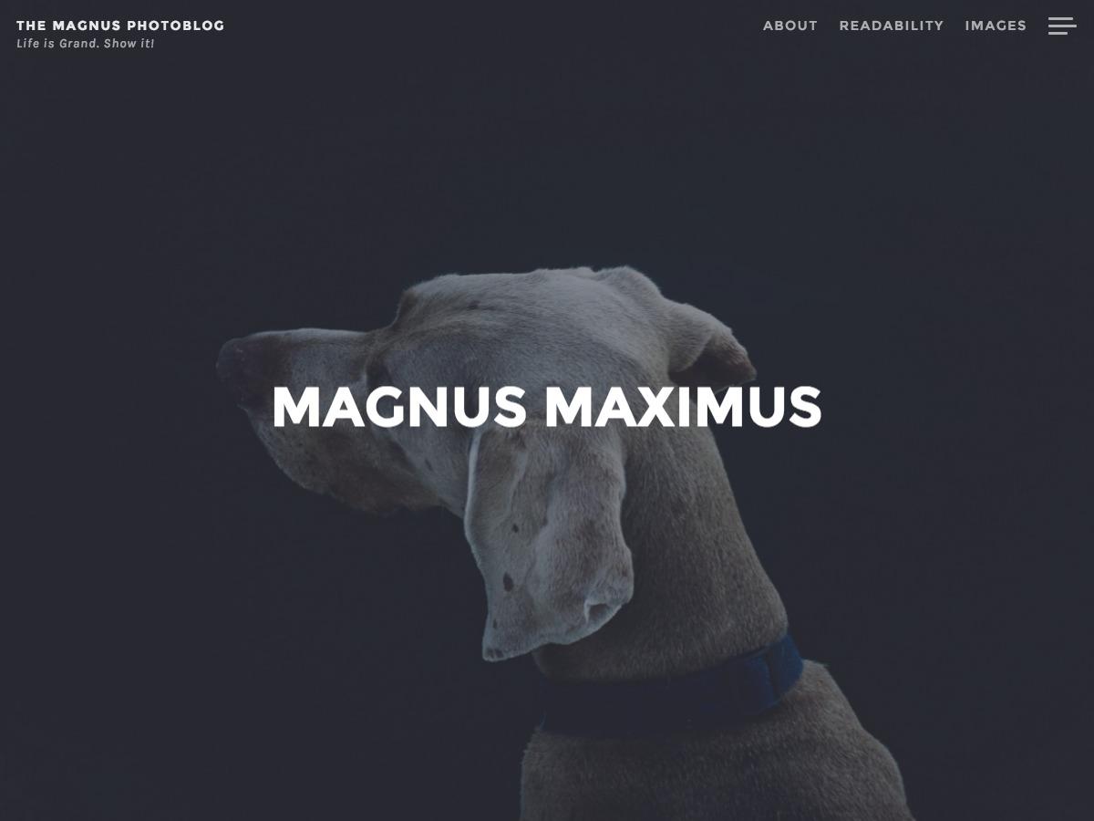 Magnus template WordPress free