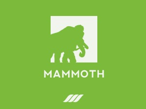 MAMMOTH-WP WordPress theme design