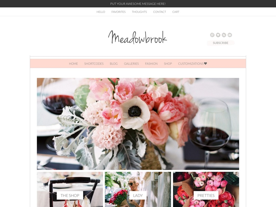 Meadowbrook - Premium theme WordPress