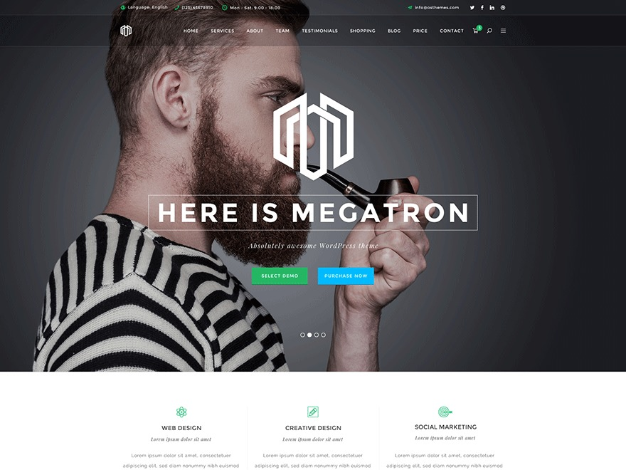 Megatron best WordPress theme