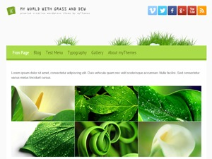 my world with grass and dew best WordPress magazine theme