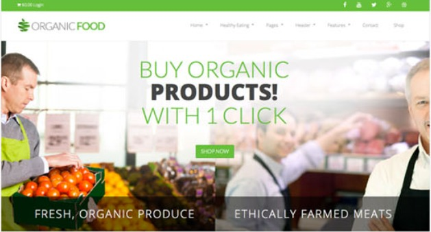 Organic Food WordPress news template