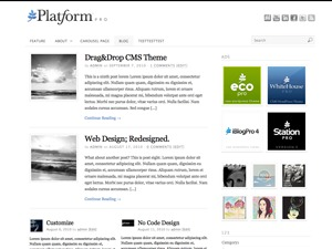 Platform template WordPress