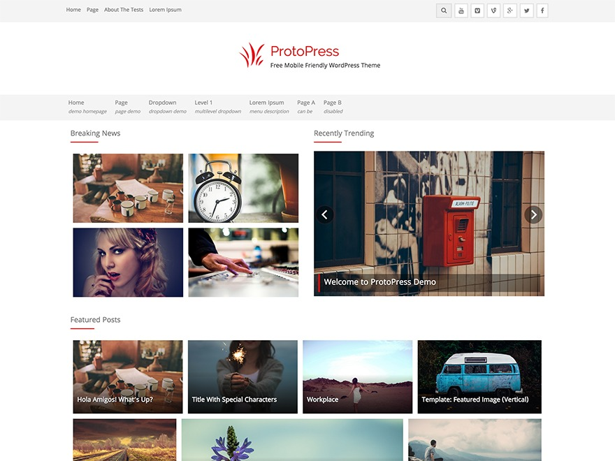 ProtoPress WordPress free download