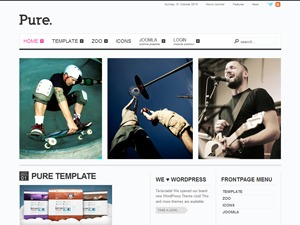 Pure WordPress website template
